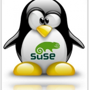 What About E17 on OpenSUSE 12.3!