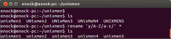rename-lowercase-unixmen