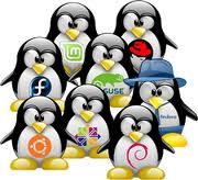 Find Out Linux Distribution Name, Version And Kernel Details