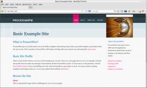 Basic Example Site - Mozilla Firefox_010