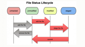 Lifecycle of status