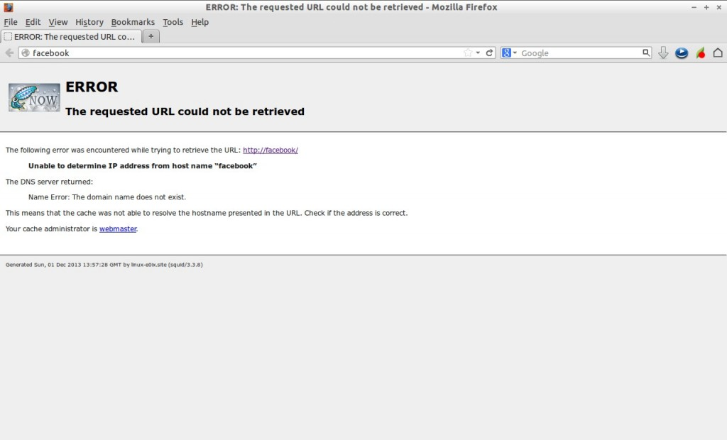 ERROR: The requested URL could not be retrieved - Mozilla Firefox_007