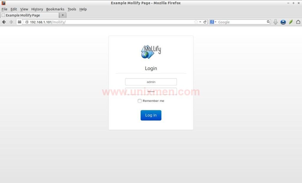 Example Mollify Page - Mozilla Firefox_004