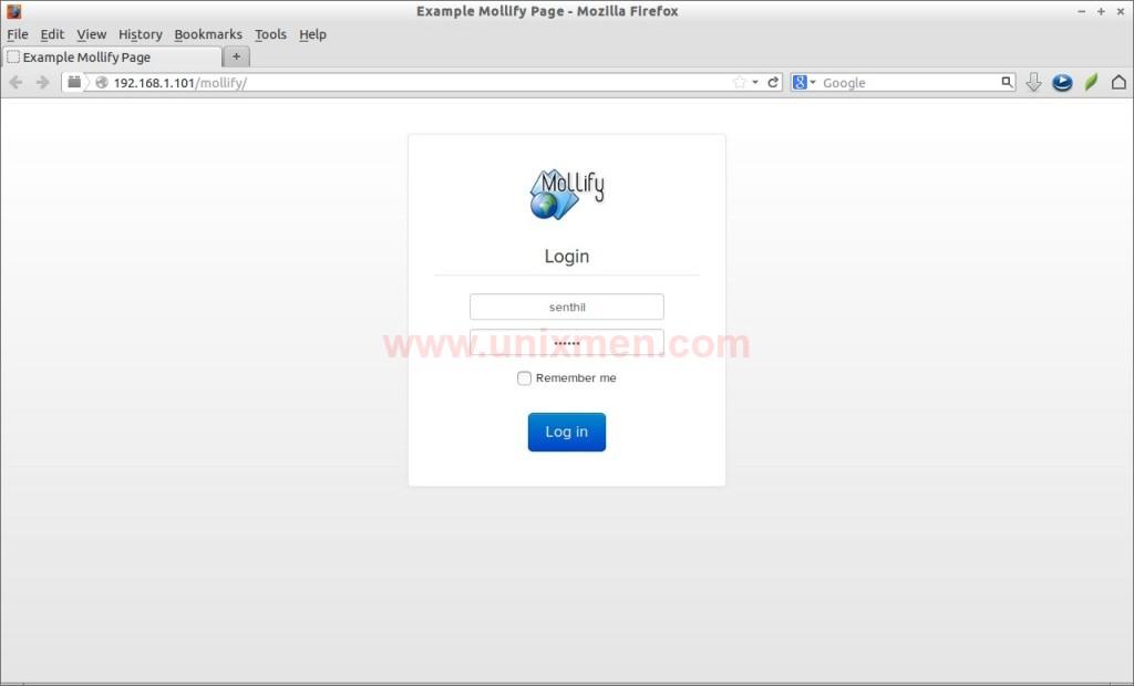 Example Mollify Page - Mozilla Firefox_006
