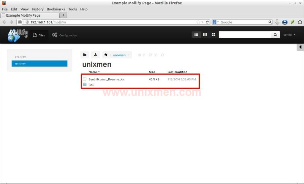 Example Mollify Page - Mozilla Firefox_010