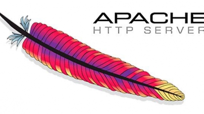 Setup Virtual Hosts In Apache On Ubuntu 14.04 LTS