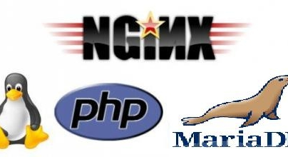 Install LEMP Server (Nginx, MariaDB, and PHP-FPM) On openSUSE 13.2/13.1