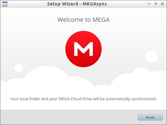 Setup Wizard - MEGAsync_005