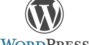 How To Secure WordPress Website