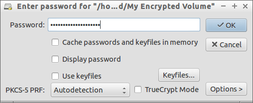 "Enter password for ""-home-sk-Encrypted-My Encrypted Volume""_010"