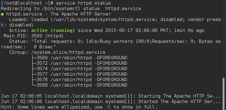 Checking web server status