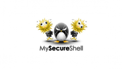 Install MySecureShell SFTP Server In Linux