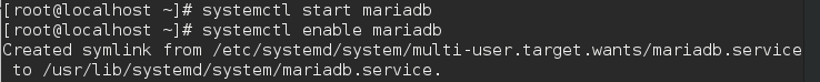 Starting MariaDB