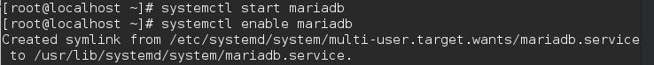 Starting MariaDB