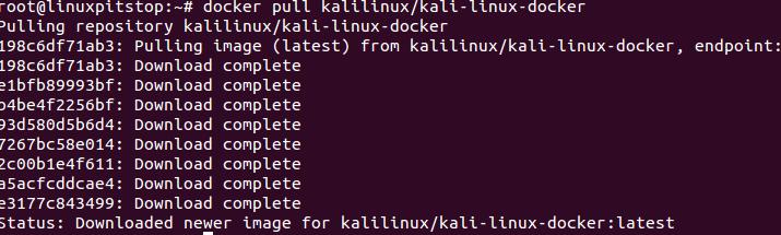 Pull Kali Linux docker