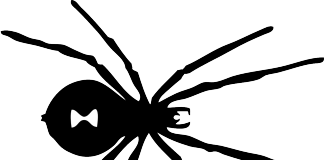 black-widow-spider-drawing