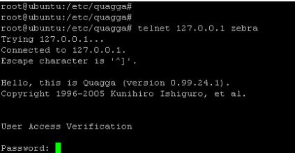 Install Quagga
