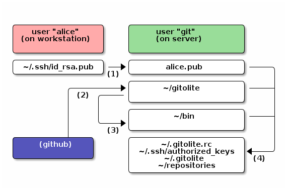 Gitolite graphical overview
