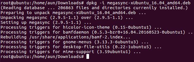 MegaSync Installed