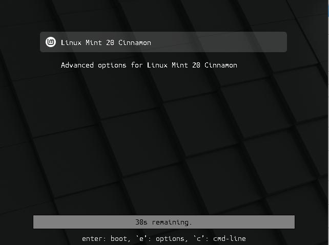 Linux Mint 20-bootloader-options
